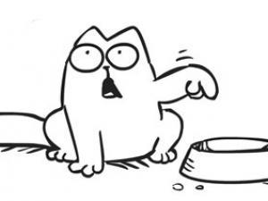chat-glouton-un-gros-probleme-d-alimentation-13335176